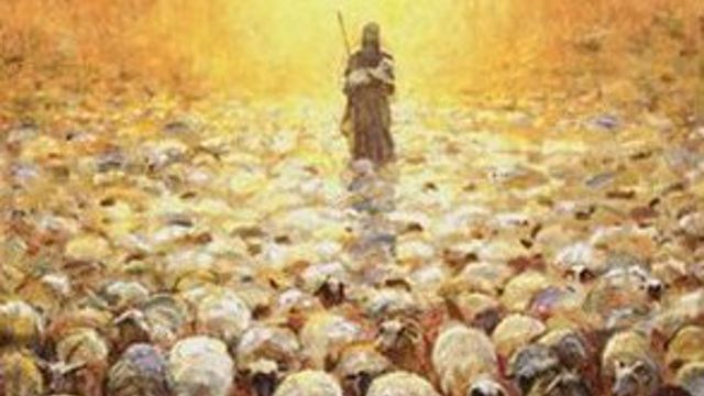 John 10 22 30 The Shepherd Has Chosen The Whole Flock Rev Kyle Randle Fumc Conway Oraciones