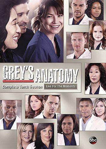 Grey S Anatomy The Complete Tenth Season