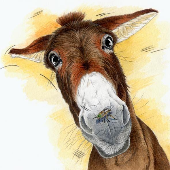 An #illustration by Patrizia Donaera for Barnaby Dell http://ow.ly/ORReX #kidlitart #childrensbooks
