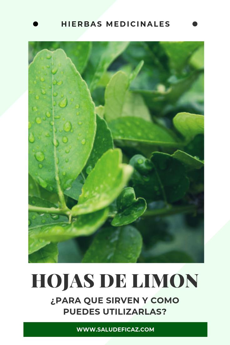 las propiedades medicinales del limon