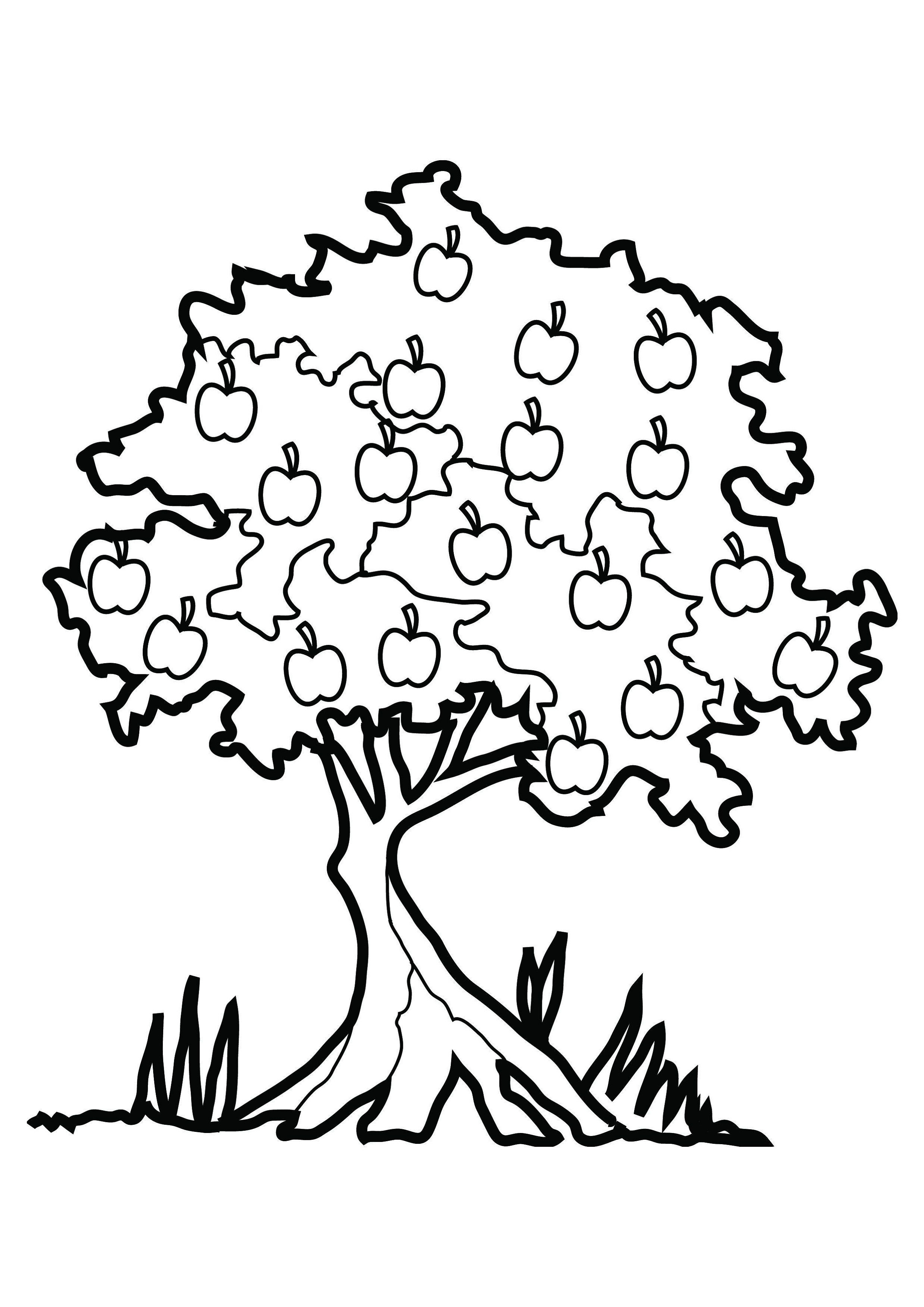 Printable Apple Tree Coloring Pages For Kids