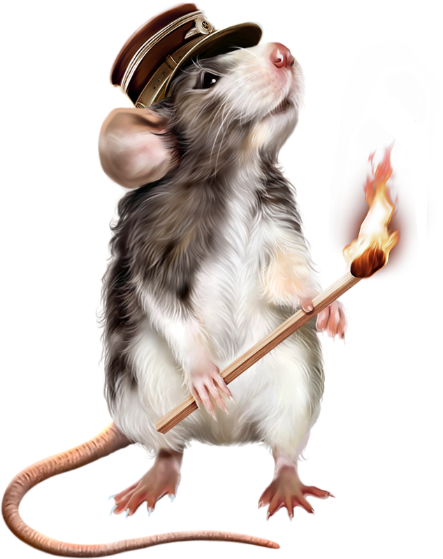 Юбилеем сестренка, год крыса картинки