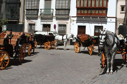Come with me to the #Golden #Triangle of #Andalucia