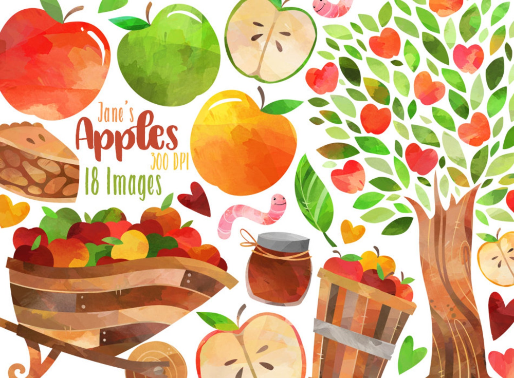 watercolor apple illustration digital printable hand painted leaf hand drawn commercial use instant dawnload png Apple clipart