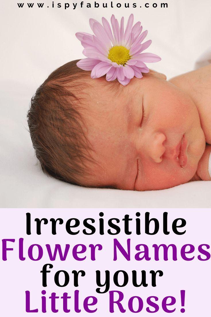 81 irresistible flower names for girls flower names for