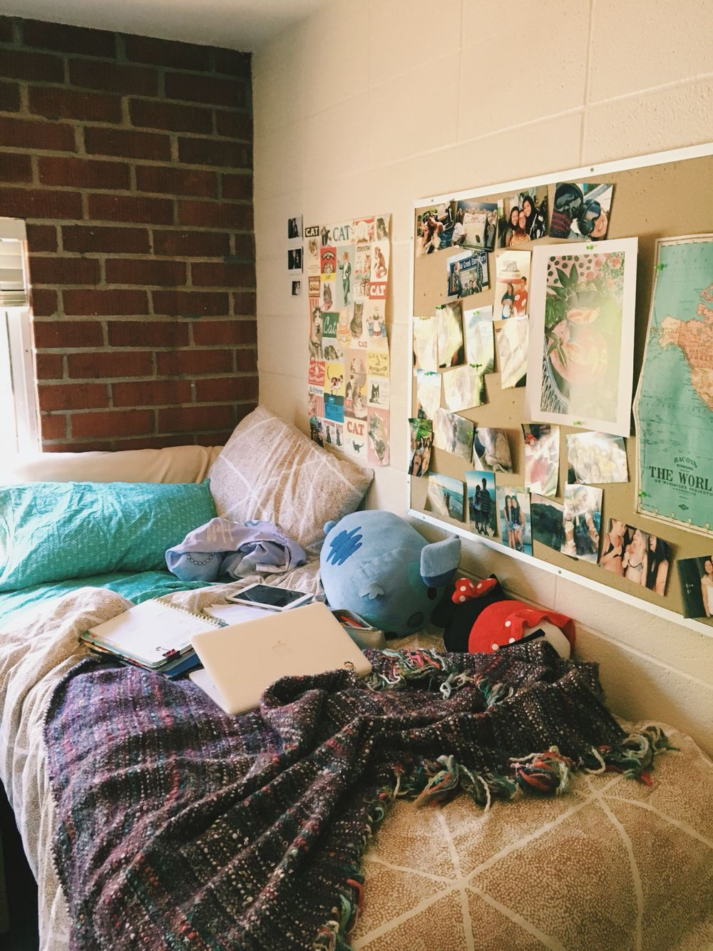 Cal Poly Slo Tenaya Dorm Dorm Room Room Decor Dream Rooms