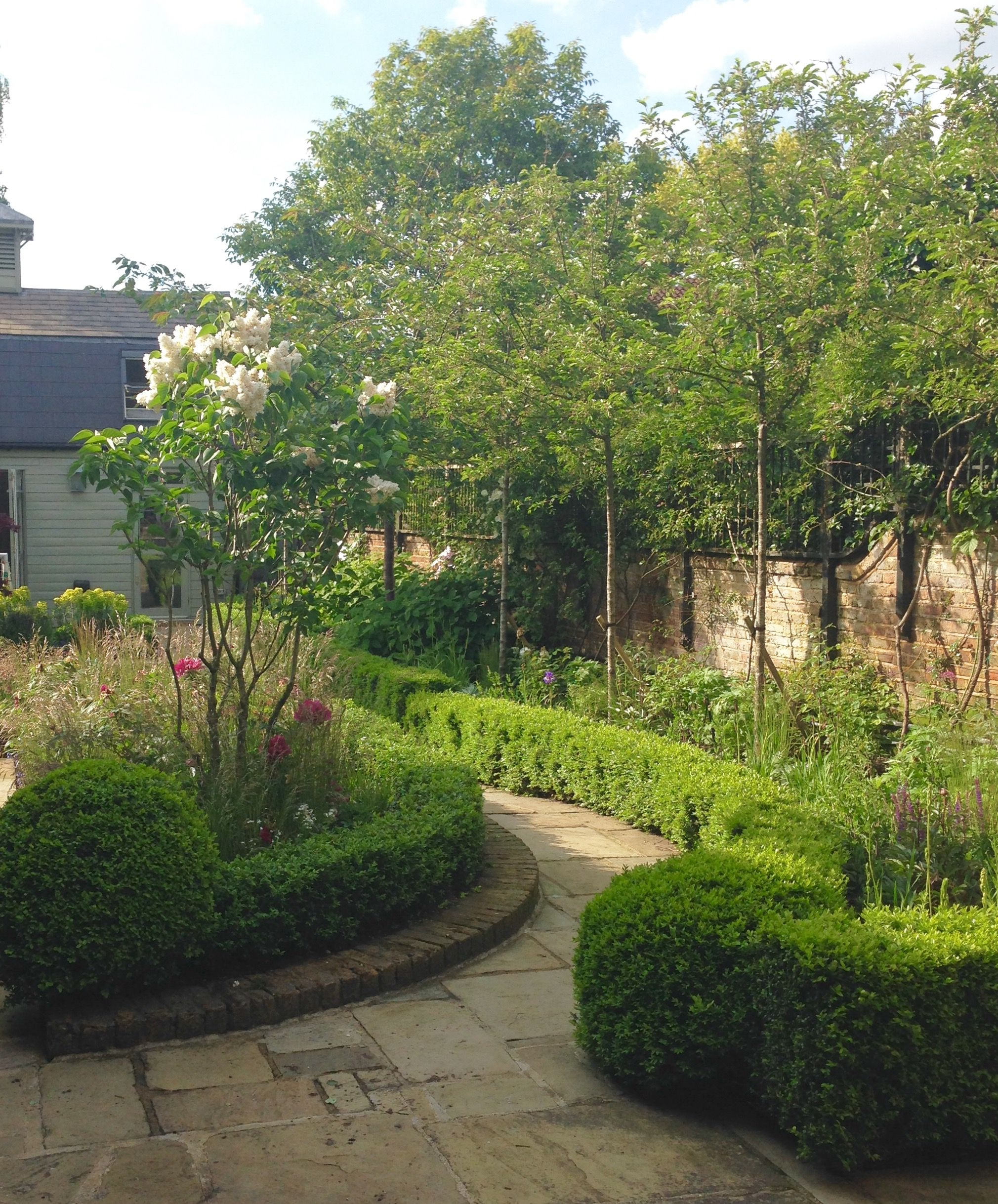 clipped buxus balls with edged pathway running along the long