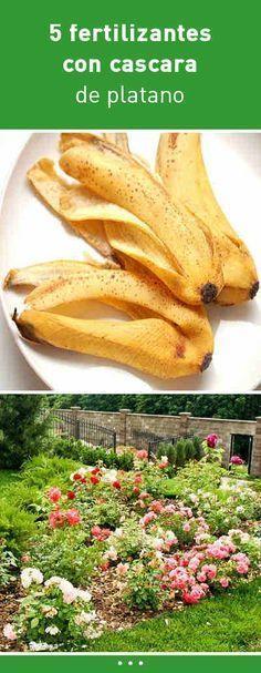 5 Fertilizantes Con Cascara De Platano Para Que Tus Plantas Crezcan Como Locas Plant Food Growing Vegetables Garden Solutions