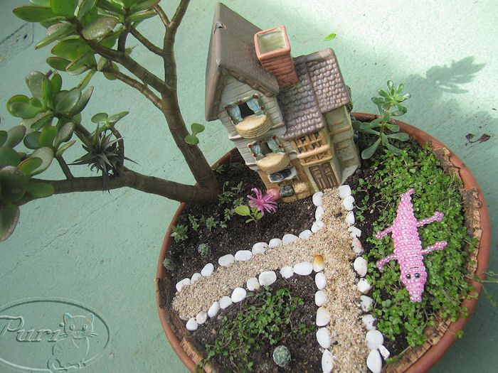 Pin de isabel garcia en peque os jardines mini jardines for Macetas para jardines pequenos