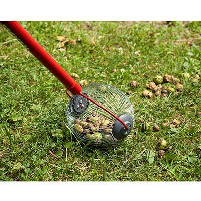 Standard Nut Gatherer Home Vegetable Garden Best Garden Tools