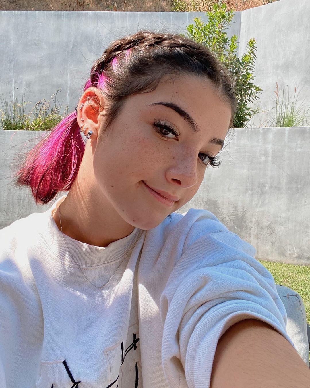 Charli Damelio In 2020 Hair Inspo Color Hair Streaks Grunge Hair