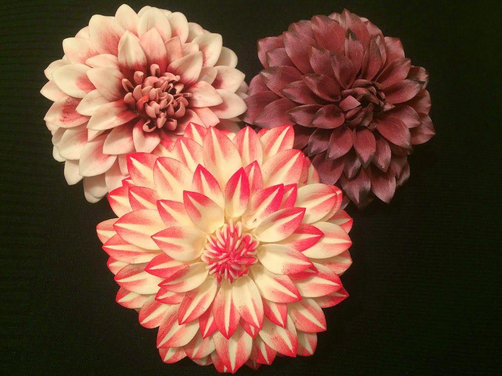 Цветы георгины из ткани своими руками фото 512