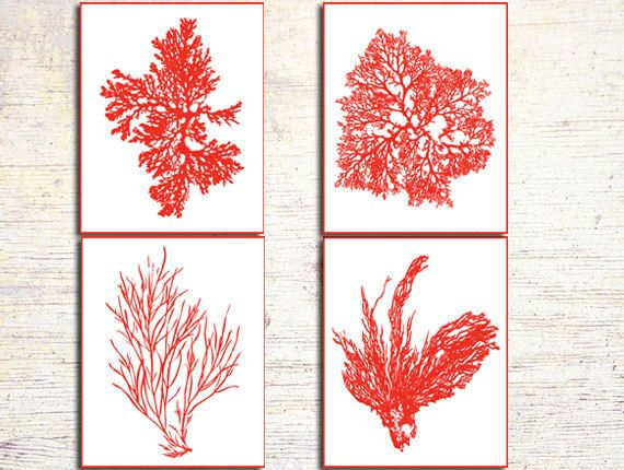 Coral Colored Wall Decor beach house gallery, dark red sea coral prints, deep red algae