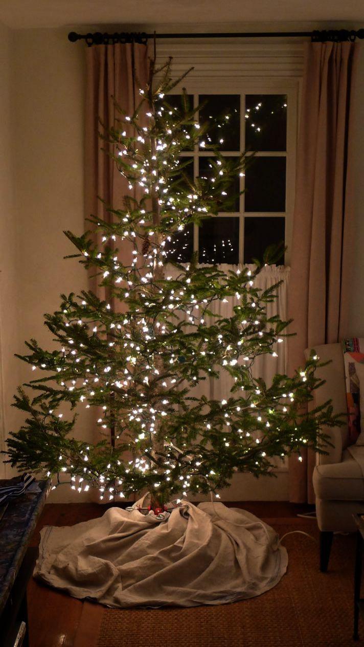 Christmas 2019 Date beneath Black Christmas Trees Uk Only