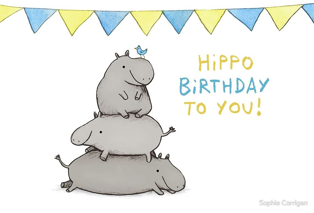 Hippo Birthday By Sophie Corrigan Hippo Animal Totems Cute Turtles