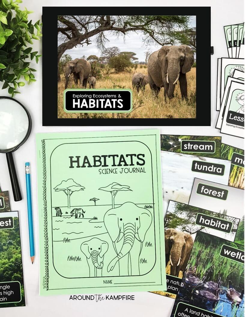 Handson Habitats Activities for Second Grade Scientists