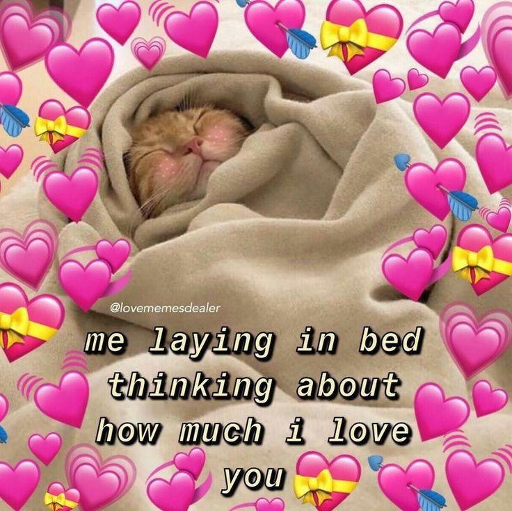 Pin By Zoyaxmartir On Meme Love You Meme Wholesome Memes Cute Love Memes