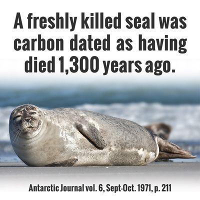 Er Carbon dating feil