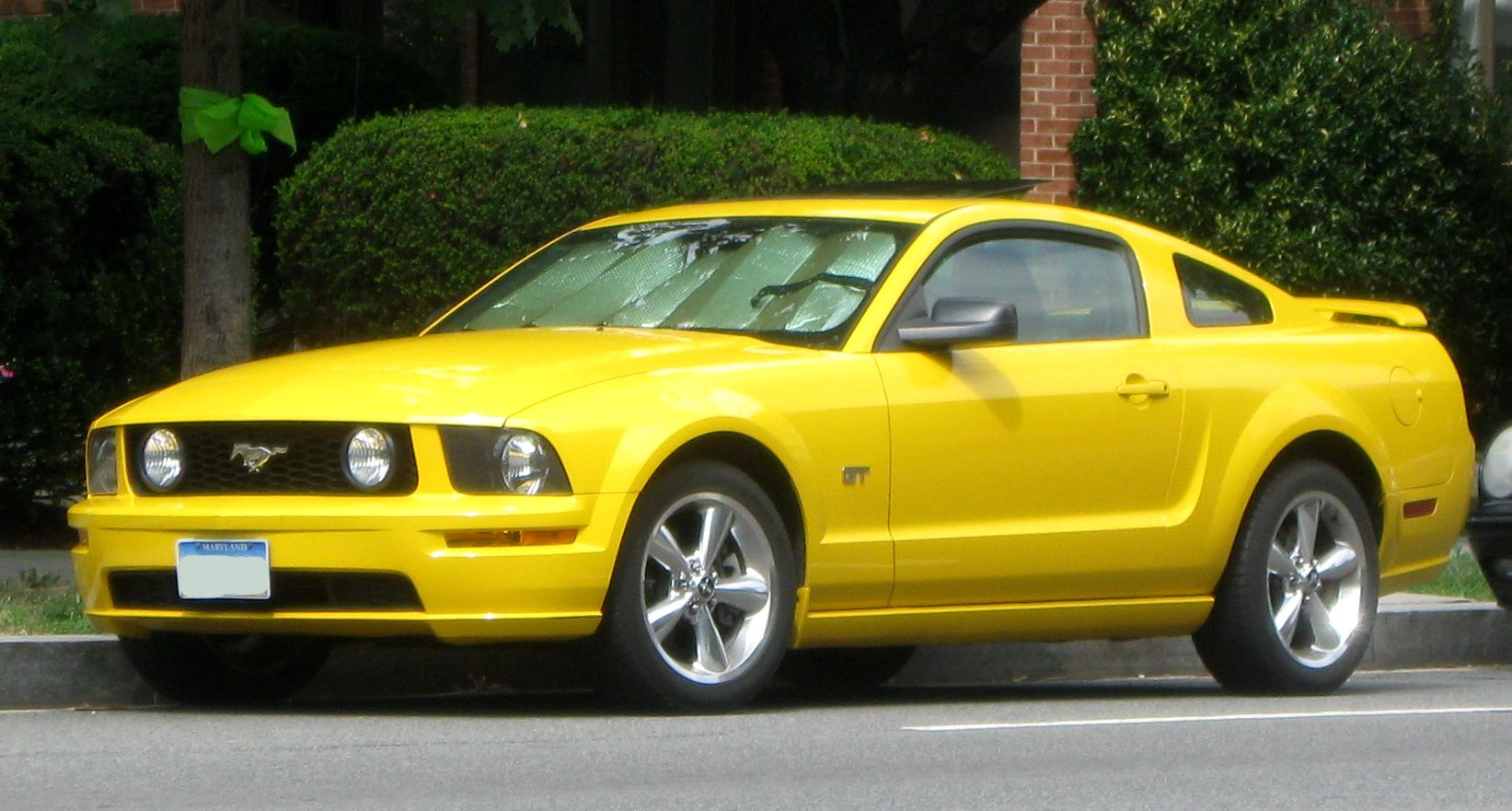 Yellow ford mustang shelby gt500 662