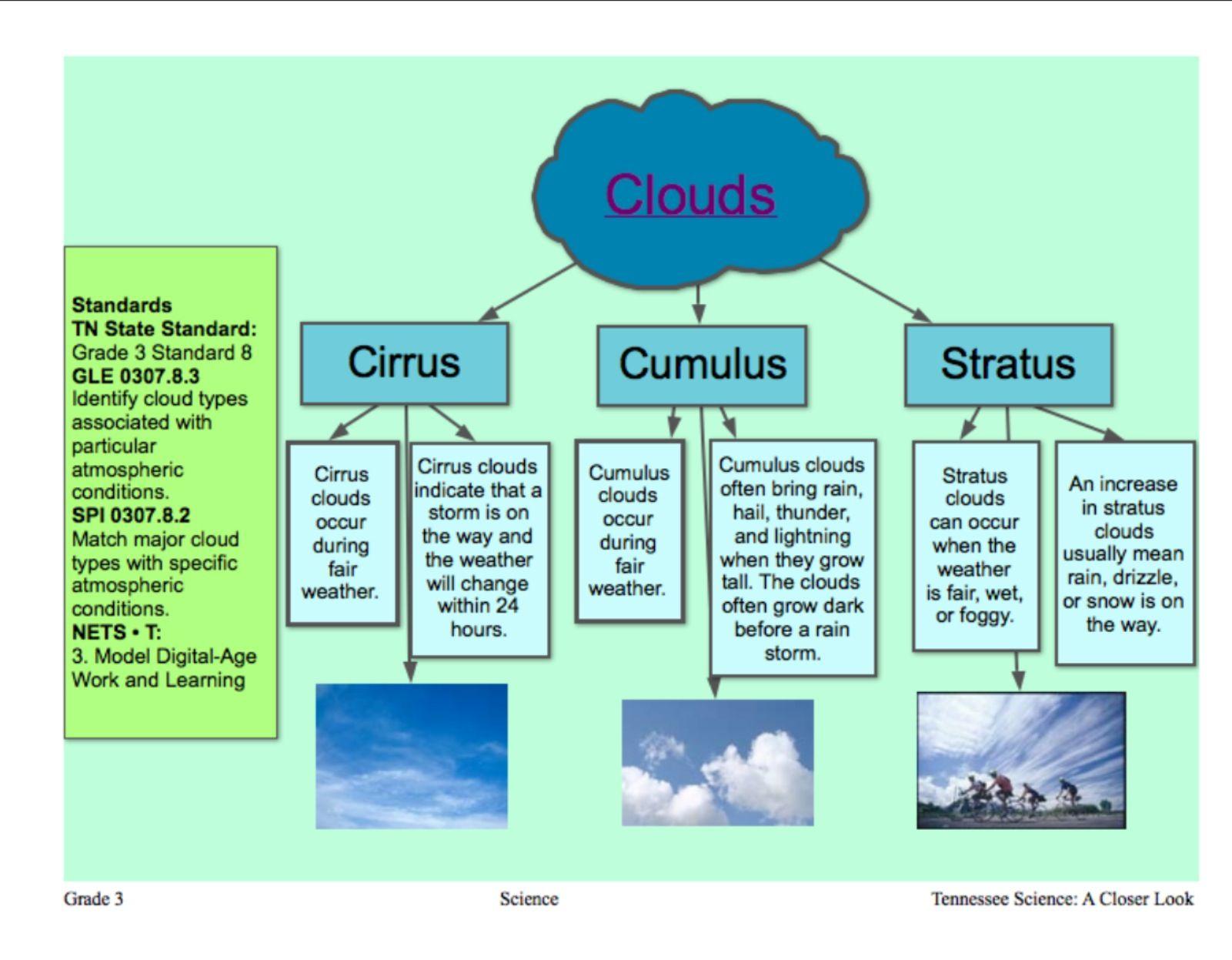 Cloud Types Tree Map