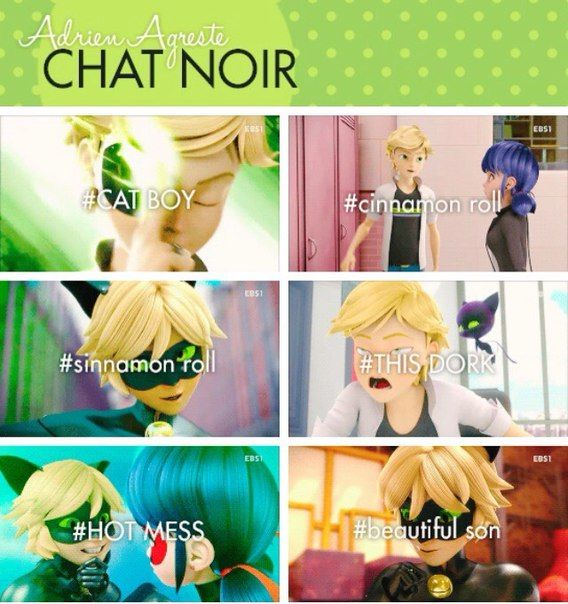 The Various Names Of Adrien And Chat Noir Miraculous Ladybug Miraculous Ladybug Comic Miraculous Ladybug Memes Miraculous Ladybug Funny