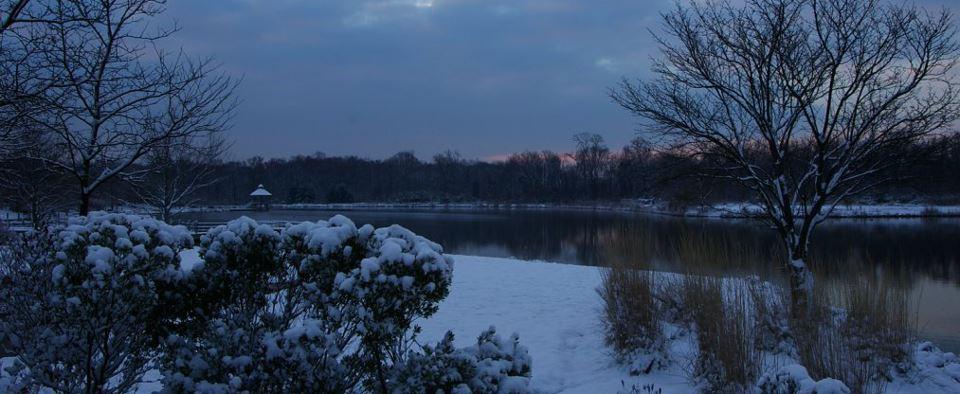 Lake Artemesia in Berwyn Heights, MD