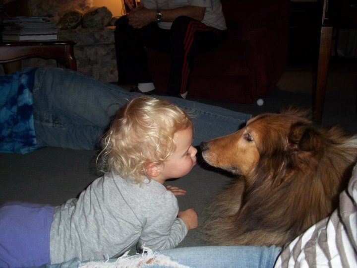 "My grand-daughter, Shiloh and Sheltie, Casey...  Titled ""Getting to know you""..."