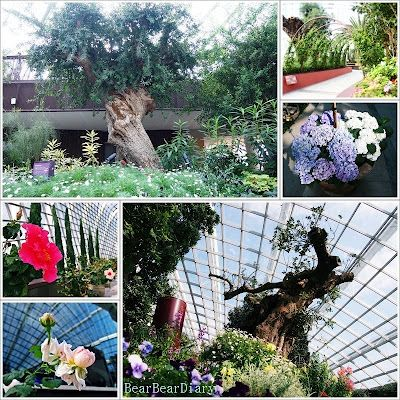 afbb123efac5acd1c899ebad2383c388 - Gardens By The Bay Valentine's Day
