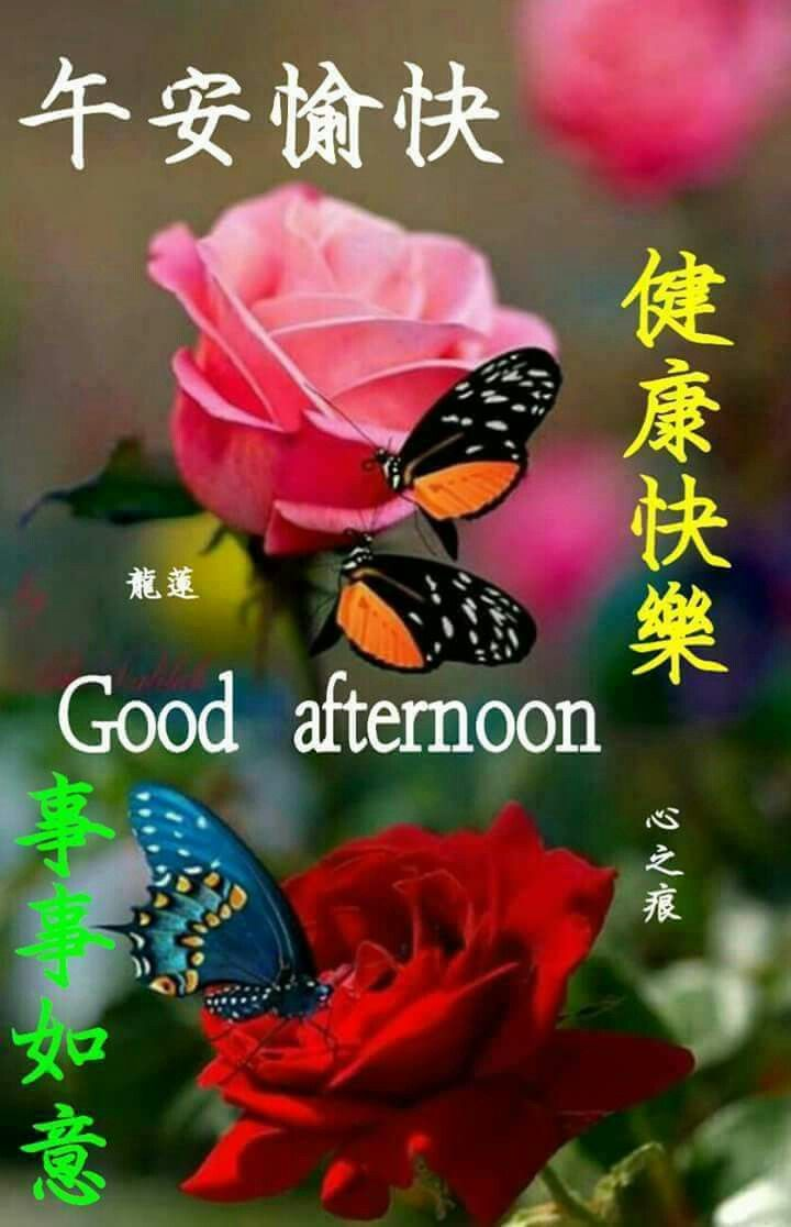 Pin by May Chua on Good Afternoon In Chinese | Afternoon
