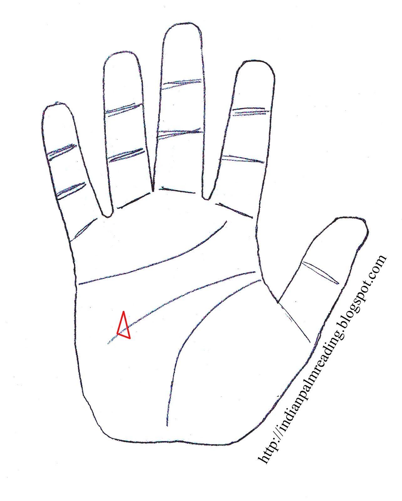 Triangle On Head Line Under Mount Of Mercury Palmistry Palm Reading Palmistry Indian Palmistry