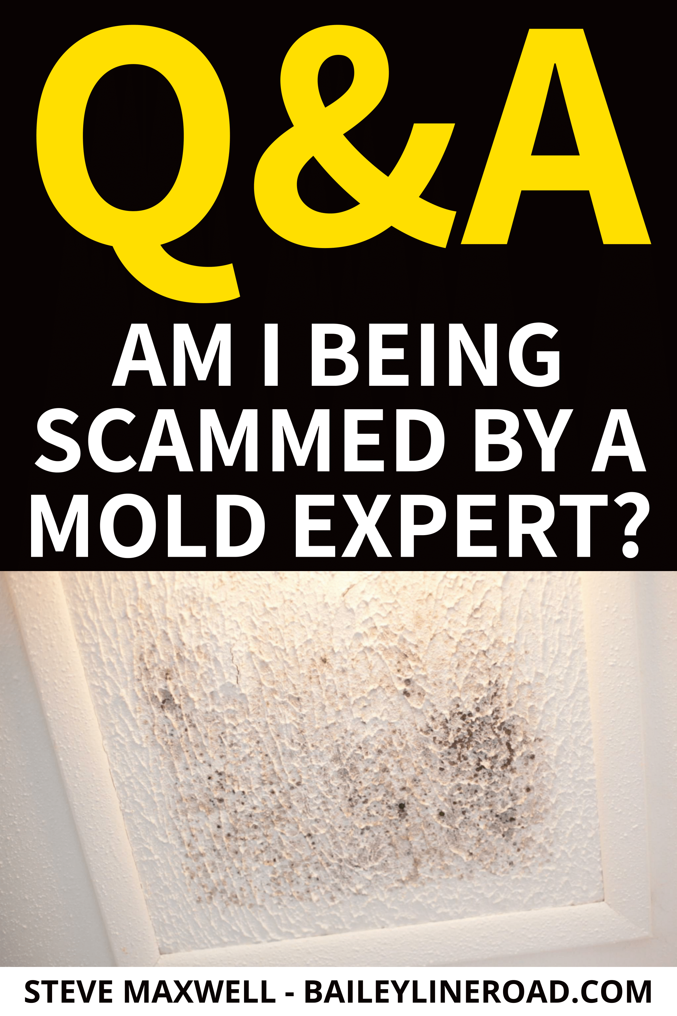 Best Q A Of The Week Am I Being Scammed By A Mold Expert 400 x 300