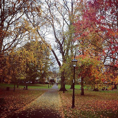 Southampton #Autumn #Europe #UK #UnitedKingdom #England #British #Southampton #Eurotrip #Travel #Traveling #Traveller #Indonesian #Journey #Wonderful #Park #Garden