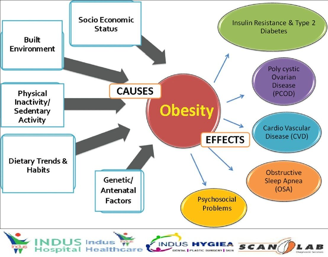Causes And Effects Of Obesity Health Chart Obesity Endocrine Disorders