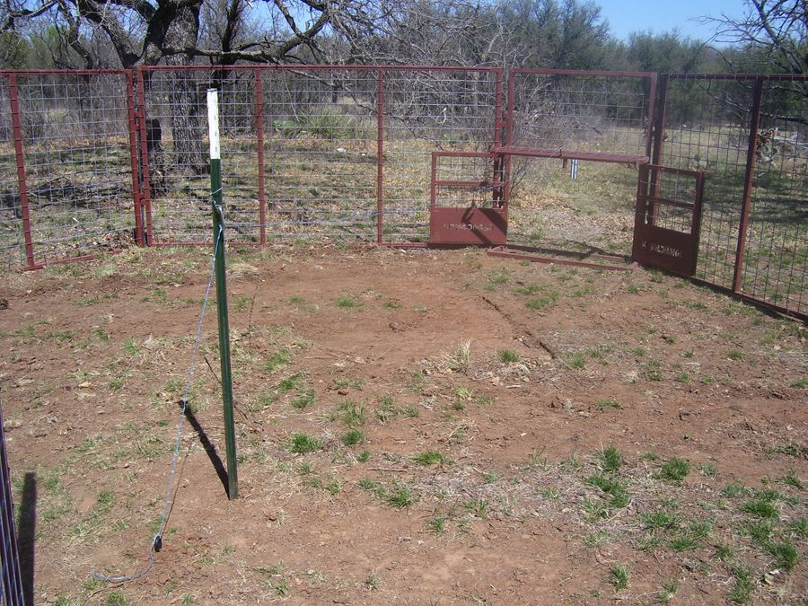 pro pen hog traps hog trap hunting cattle rh pinterest com