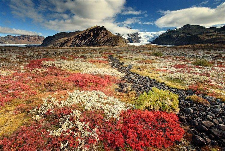 40 صورة مذهلة للمناظر الطبيعية في آيسلندا Iceland Landscape Visit Iceland Iceland Travel