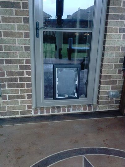 Lone Star Dog Doors In Dallas Tx Area Installs An In Glass Hale Pet