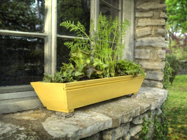 Shallow Rooted Veggies For Growing In Window Boxes With Images