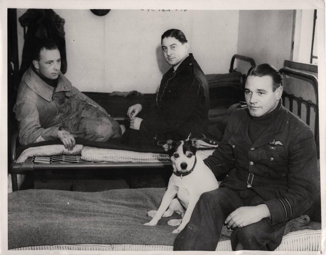 "1940- No. 74 R.A.F. Squadron ""Ace"" pilots Brian Draper (left), Harbourne Mackay Stephen (center) and squadron leader Adolf ""Sailor"" Malan (holding mascot terrier)."
