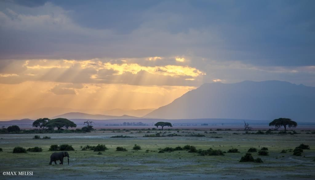 'We are all but moments in the sun' - sunset in Amboseli