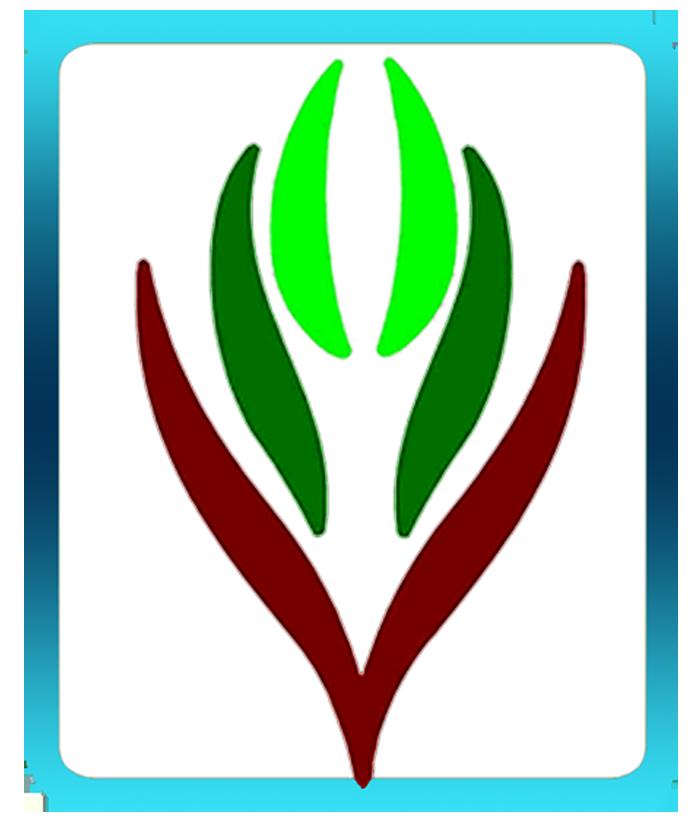 شعار لجنة التنمية بشرورة Messenger Logo