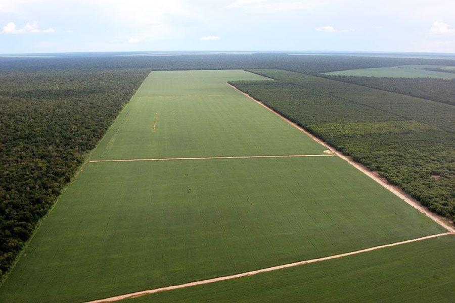 América Latina tem pior distribuição de terras do mundo, diz FAO  http://controversia.com.br/3897