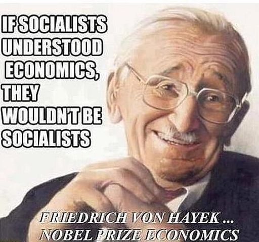 If Socialists Understood Economics, They Wouldn't Be Socialists.