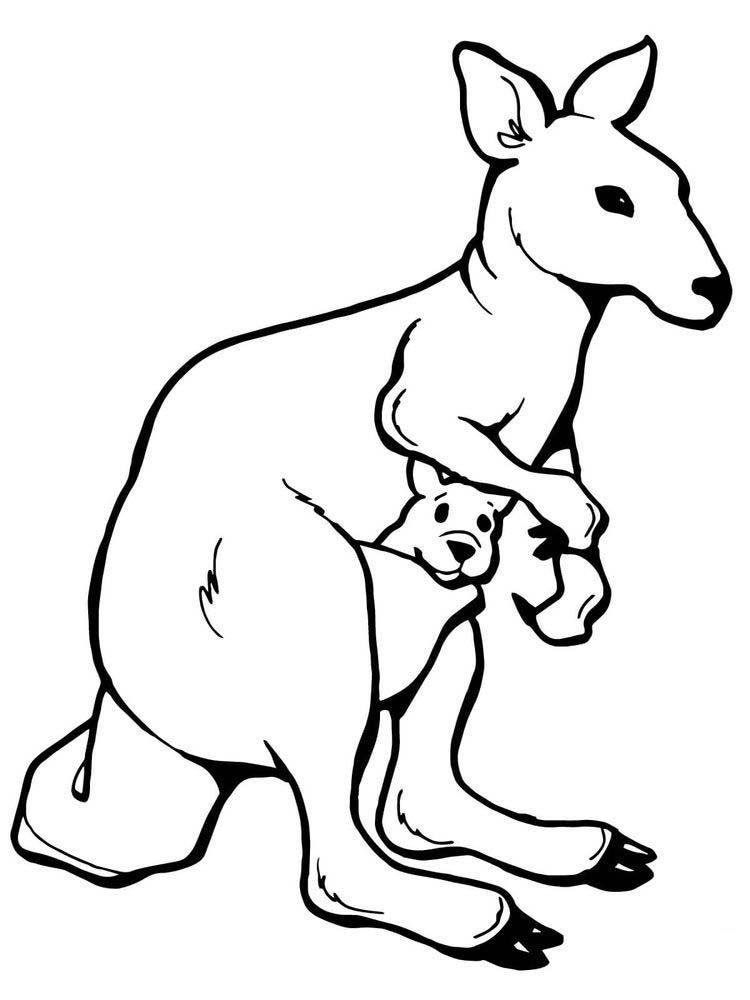 Kangaroo Coloring Page Free Animal Templates Animal Coloring Pages Elephant Coloring Page