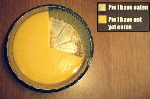 World's most accurate Pie-Chart.