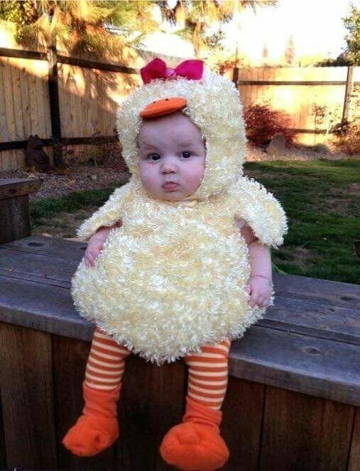 Hermoso disfraz de pollo para bebe Disfraces Pinterest Disfraz - trajes de halloween para bebes