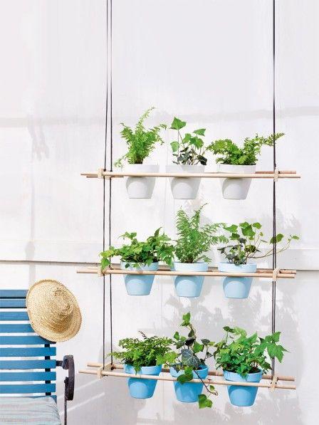 diese pflanzenideen finden auch auf dem kleinsten balkon platz balkon garten pinterest. Black Bedroom Furniture Sets. Home Design Ideas