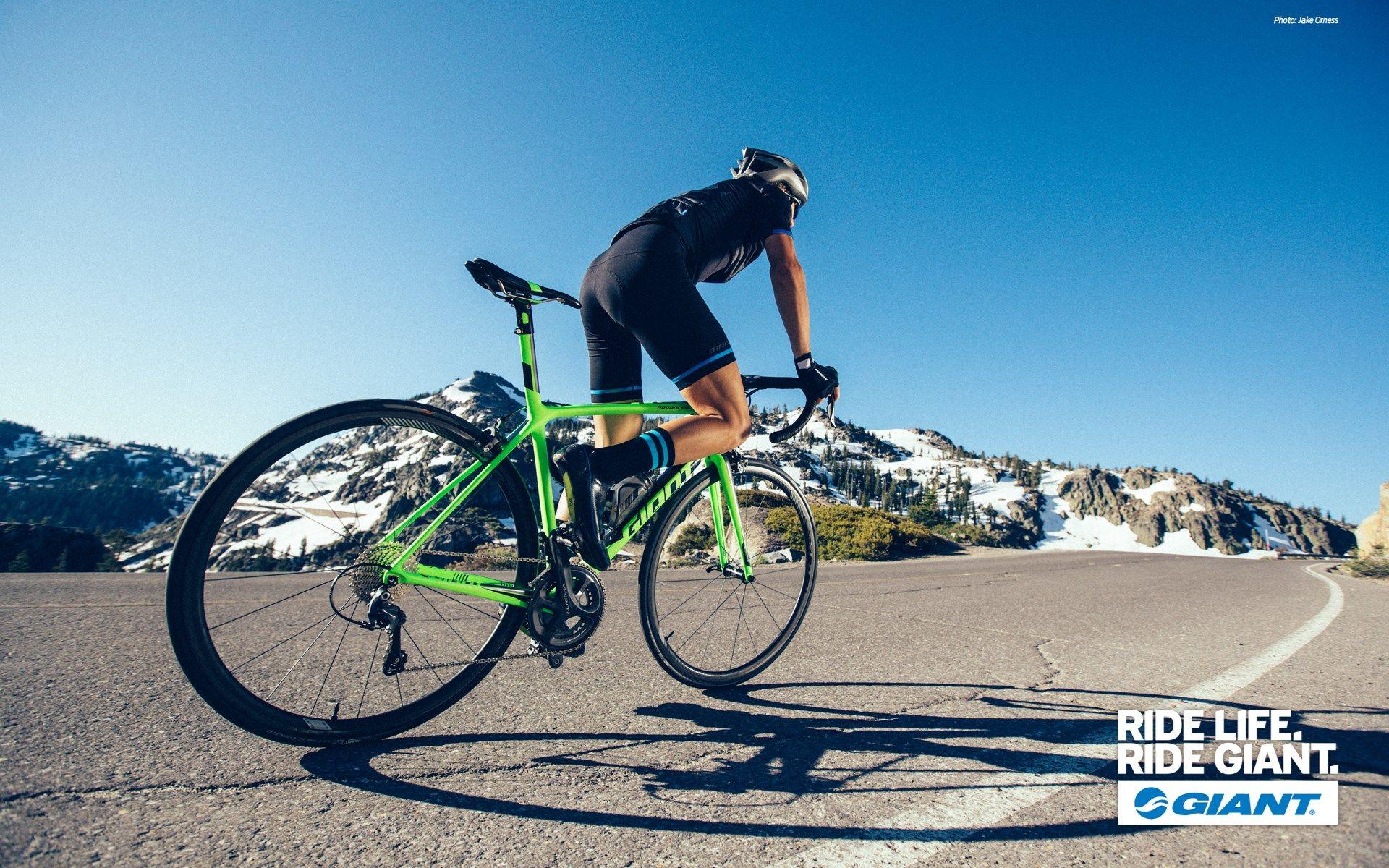 Giant Bike Wallpapers For Iphone In 2020 Giant Bikes Iphone Wallpaper Bike