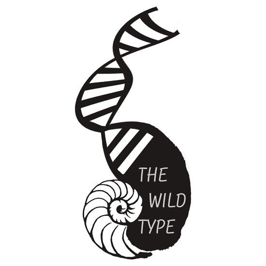 The Wild Type by amyskhaleesi #redbubble, #orphan black # ...