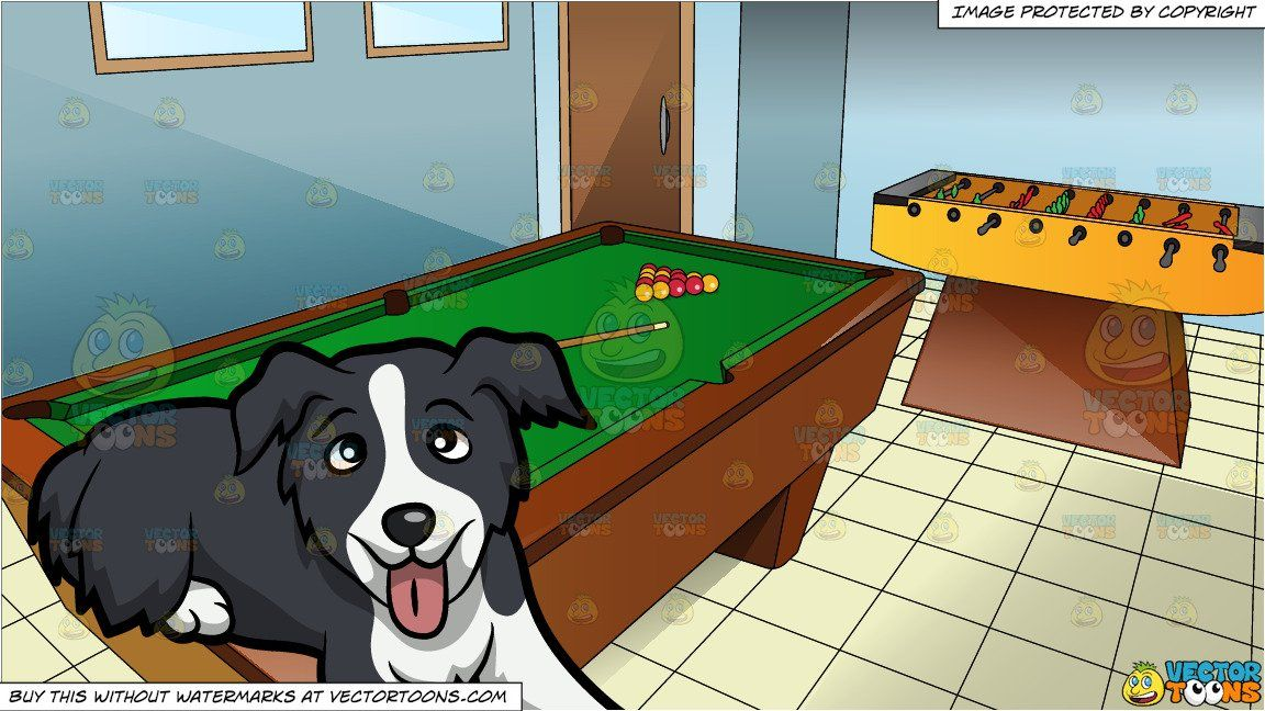 A Cute Border Collie Puppy And A Gaming Room With Pool Table And