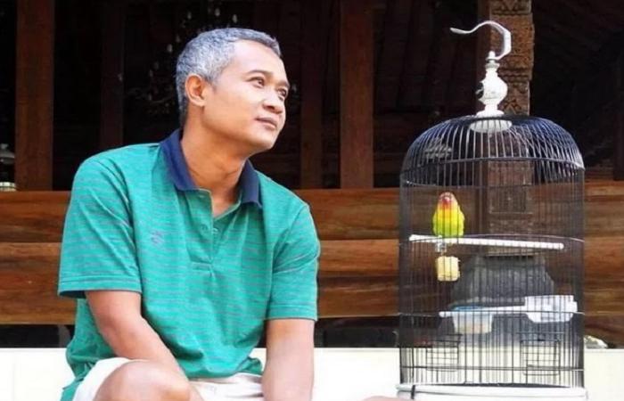 Pin Oleh Informasi Komunitas Kicau Mani Di Perawatan Burung Burung Perawatan